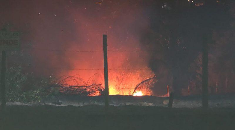Prefeitura de Eunápolis precisa reflorestar vegetação destruída pelo fogo